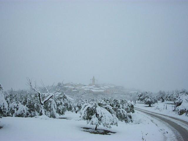 Nevada 2001 Benillup sota la neu