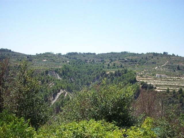 2002 Vista Barranc cap al Mas de Jordà