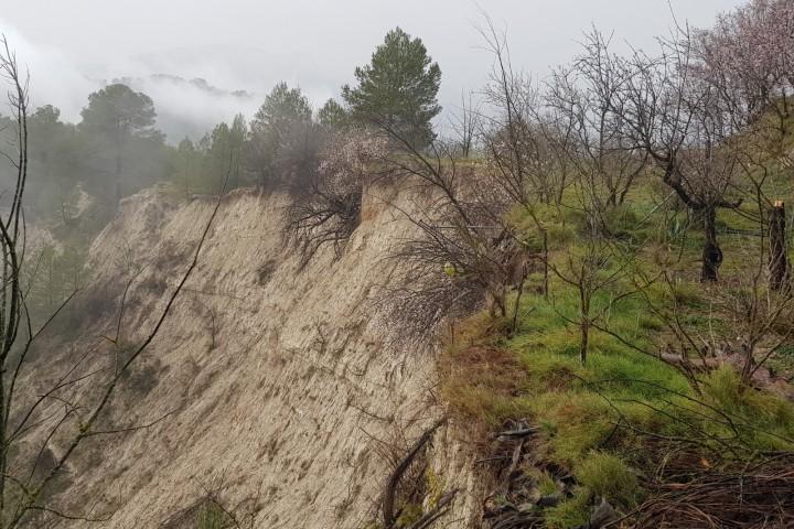 Nota de premsa: Les pluges provocades pel pas del temporal Glòria continuen agreujant la situació del barranc de Caraita